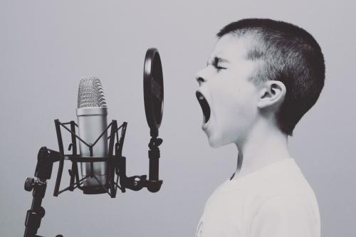 Studio d'enregistrement. Le jeune garçon hurle au micro.