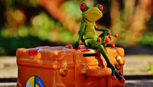 Grenouille prête à partir sur sa valise